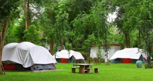 Things To Know Before Plan A Camping Tour?